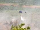 Fogo atinge áreas de Mata Atlântica em Porto Seguro há 8 dias: 'criminoso'