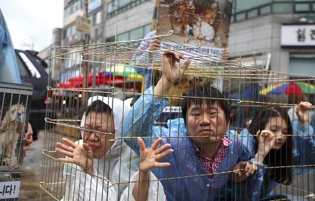 """Ativistas pró-direitos animais se trancam em jaula próximo a mercado de carne de cachorro em Seongnam, ao sul de Seul, neste domingo (15). Os ativistas protestam contra o hábito local de comer carne canina, que muitos coreanos acreditam que """"tonificam"""" o corpo no calor do verão (Foto: Hye Soo Nah/AP)"""