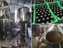 Com nove cervejarias, bairro de Porto Alegre � polo para amantes da bebida