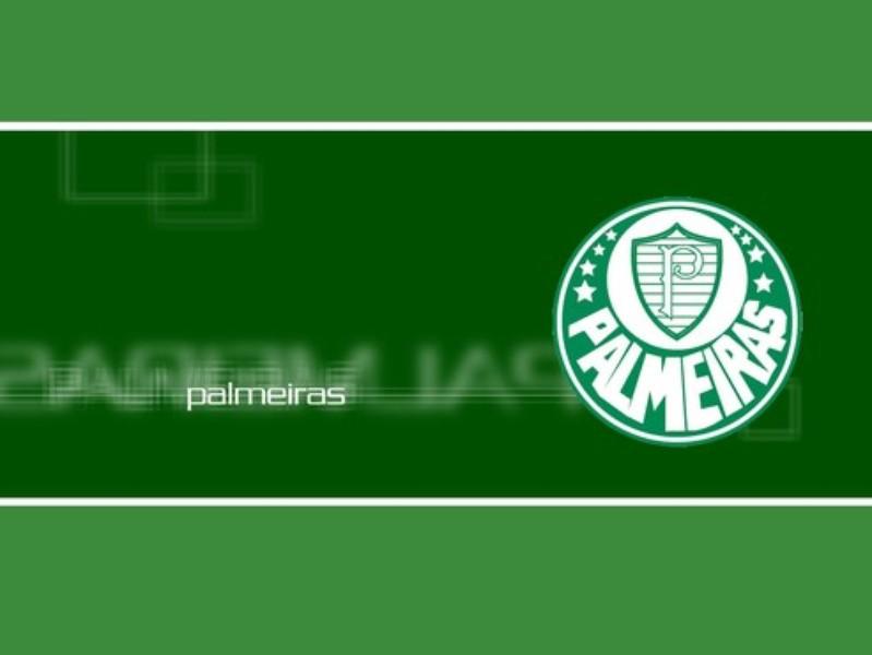 Papel de Parede Palmeiras  Download  TechTudo