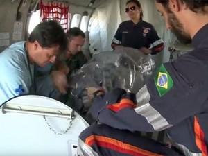Avião da FAB foi adaptado para o transporte do paciente com suspeita de ter ebola (Foto: Reprodução / FAB TV)