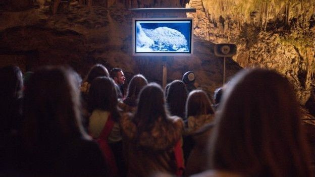 Visitantes podem ver a fêmea por uma câmera infravermelha (Foto: Iztak Medja Potonsjka Jama  )
