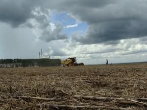 Abertura oficial da colheita de soja em MS foi realizada em fazenda em Bandeirantes (Foto: Anderson Viegas/G1 MS)