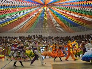 Quadrilha Luiz Gonzaga foi criada em 2003 e desde 2007 participa do Levanta Poeira  (Foto: Tássio Andrade/G1)