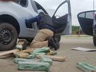 Sete pessoas são presas em rodovias federais de SC por tráfico de drogas