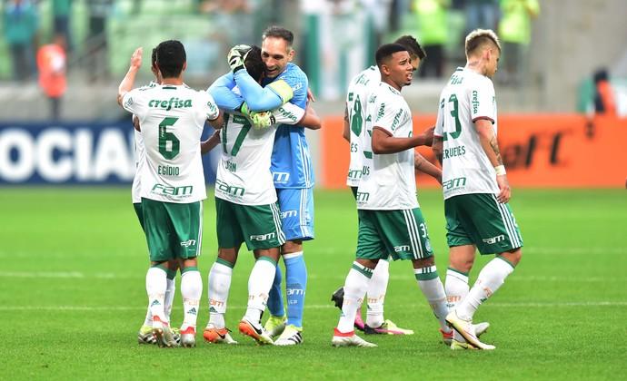 Palmeiras x Santa Cruz (Foto: Marcos Ribolli)