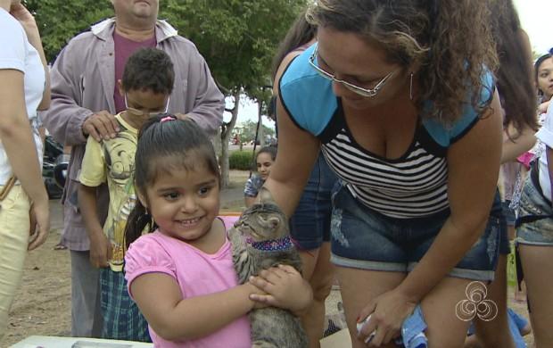 ONG realiza tarde de adoção de gatos em praça de Macapá (Foto: Amapá TV)