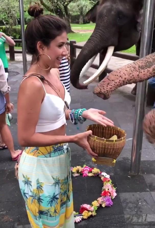 Paula Fernandes alimenta elefantes (Foto: Reprodução)