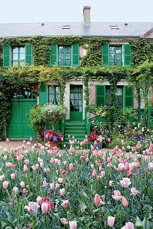 Invadindo a casa de Monet com um festival de cores, logo na entrada, vê-se o canteiro de miosótis. À frente, vasto canteiro de tulipas nos tons pink e salmão. A trepadeira falsa-vinha cobre as paredes dianteiras. Essa espécie produz flores pequeninas na p (Foto: Fernando Grilli)