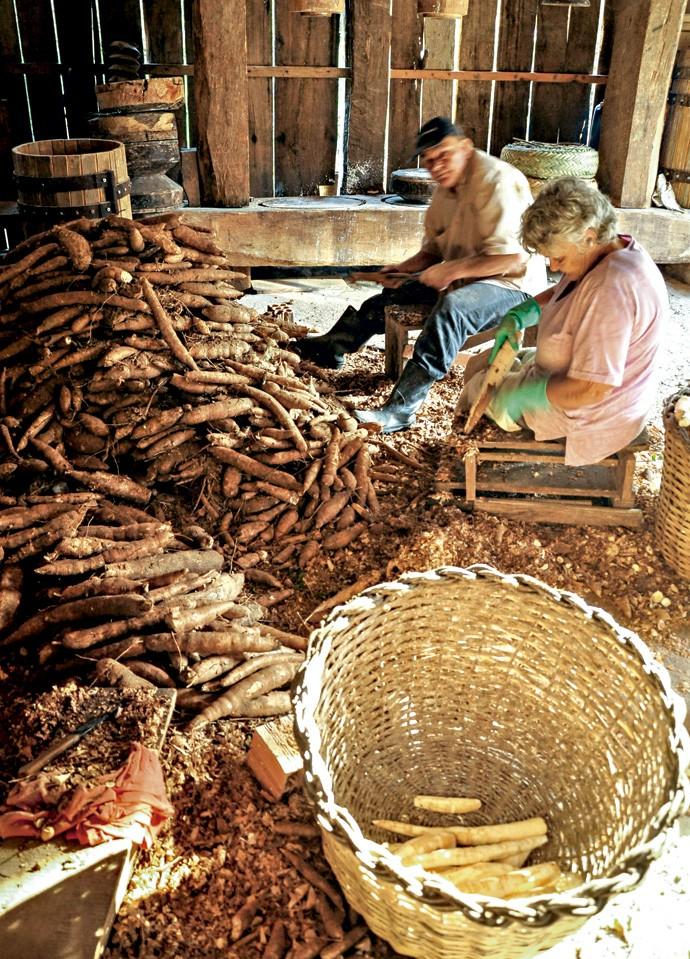 Os engenhos de farinha no litoral catarinense preservam a tradição da produção da bijajica, bolo feito com massa de mandioca (Foto: Fernando Angeoletto)