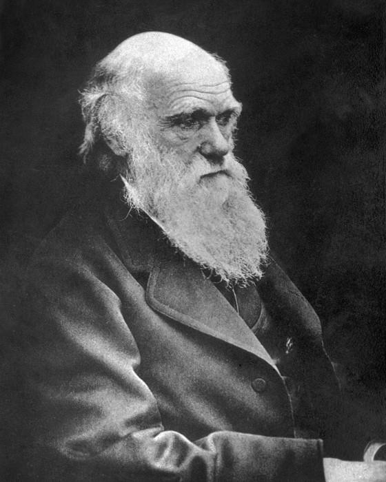 Charles Darwin. Ele tentava evitar embates sobre religião (Foto: Getty Images)