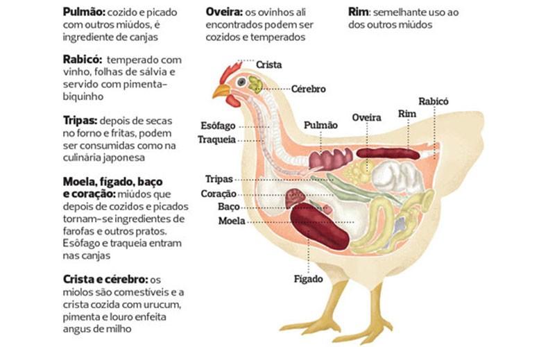 galinha_caipira_info_ (Foto:  )