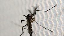 Aracaju tem índice de médio risco ou alerta (Paulo Whitaker/Reuters)