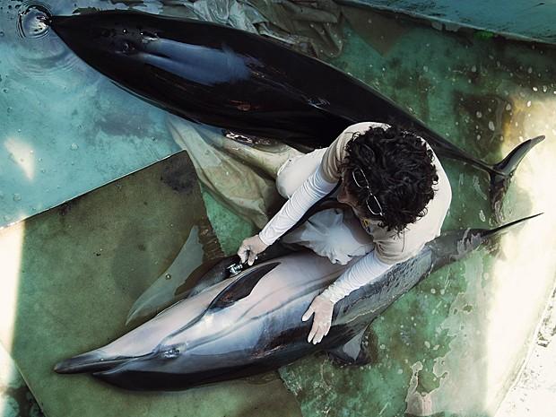 Golfinhos resgatados El Salvador (Foto: Ulises Rodriguez/Reuters)