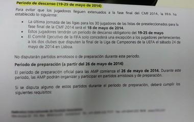 VASCO PAPEL FIFA (Foto: Raphael Zarko)