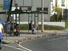 Motoristas de ônibus intermunicipais aderem à greve na região