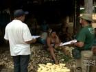 Balanço da desocupação da reserva indígena Awá-Guajá será feito dia 29