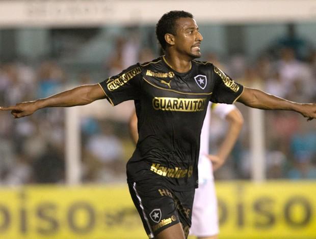 Elias comemora gol do Botafogo contra o Santos (Foto: Luiz Fernando Menezes / Agência estado)