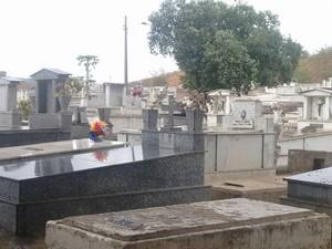 Cemitérios de Valadares, entre eles o do Bairro Santa Rita, passam por limpeza, pintura e capina (Foto: Diego Souza/G1)