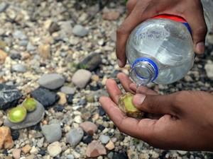 Ritual inclui molhar o cacto com água (Foto: Alfredo Estrella/AFP)