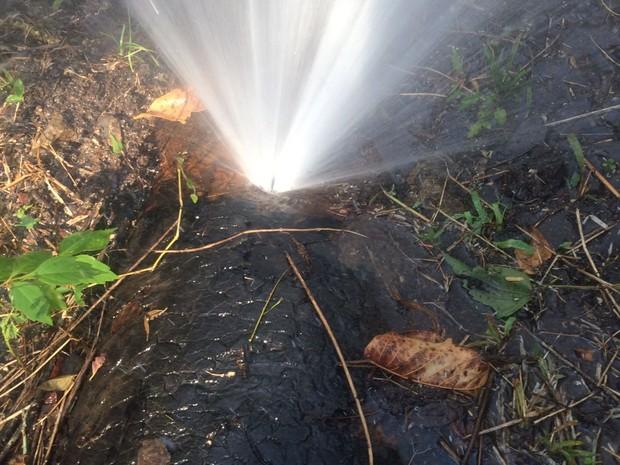 Tubulação da Adutora Palmeirinha foi danificada em Bom Jardim (Foto: Divulgação/Compesa)