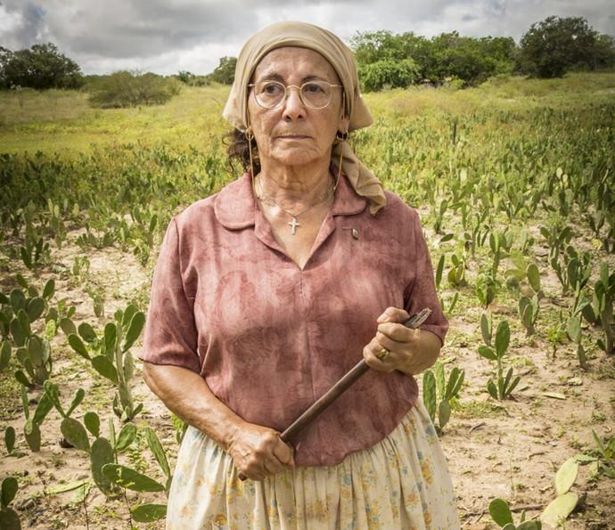 Piedade sai da fazenda Piatã e chega à propridade dos de Sá Ribeiro para ter uma prosa séria com Afrânio (Foto: Felipe Nahon/ Gshow)
