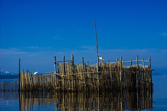 Um curral de pesca artesanal em um dos recantos da Baía de Guanabara (Foto: © Ana Gonzalez/Projeto Uçá)