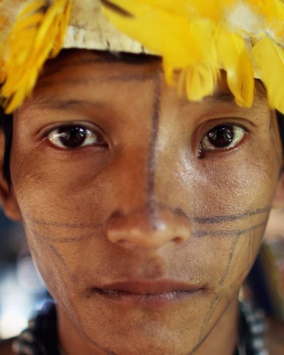 Um nova trabalho diz que, antes da chegada dos europeus, as populações indígenas da Amazônia interferiram na formação da floresta (Foto: Getty Images)