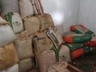 Fiscalização apreende 4 toneladas de sementes irregulares no Tocantins