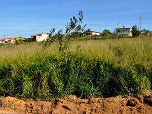 Donos de lotes serão notificados em Bom Despacho (Foto: Prefeitura/ Divulgação)