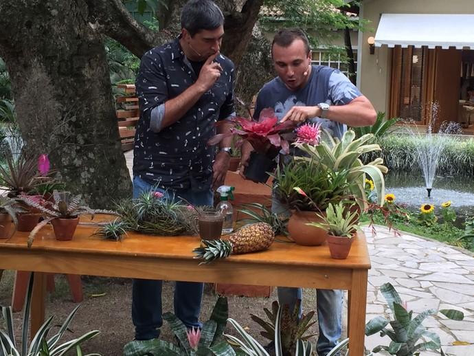 Zeca Camargo ouve como cuidar corretamente de bromélias (Foto: Shaulla Rodrigues / Gshow)