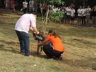 Ipês são plantados em homenagem às 13 vítimas de tragédia em Ibitinga