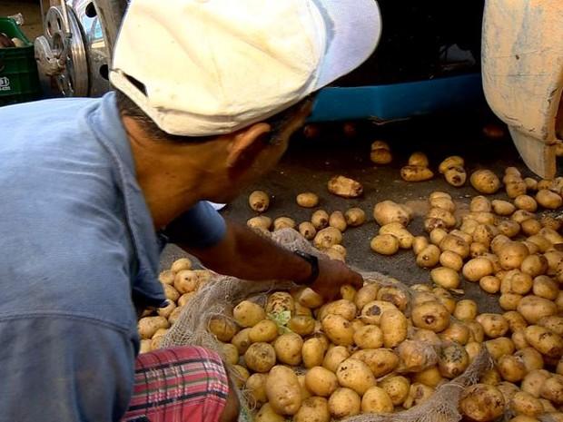 Desempregado recolhe alimentos no lixo da Ceasa no Espírito Santo (Foto: Reprodução/ TV Gazeta)