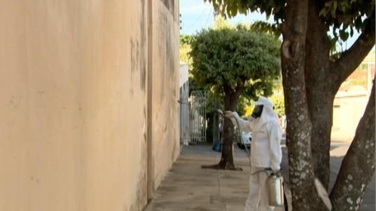 Agentes iniciam os trabalhos contra a leishmaniose em Santo Anastácio