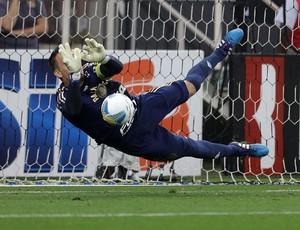 Fernando Prass Palmeiras Corinthians pênalti