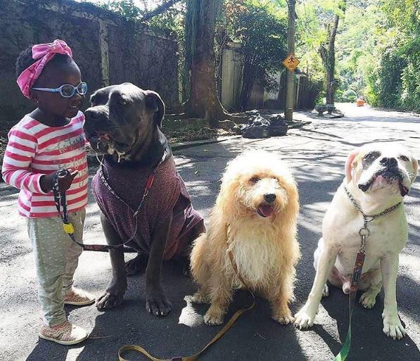 Titi levando os cães dos pais para passear (Foto: Reprodução/Instagram)