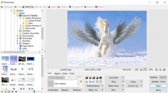 Veja como fazer uma montagem de foto usando o PhotoScape no PC (Foto: Reprodução/Barbara Mannara)