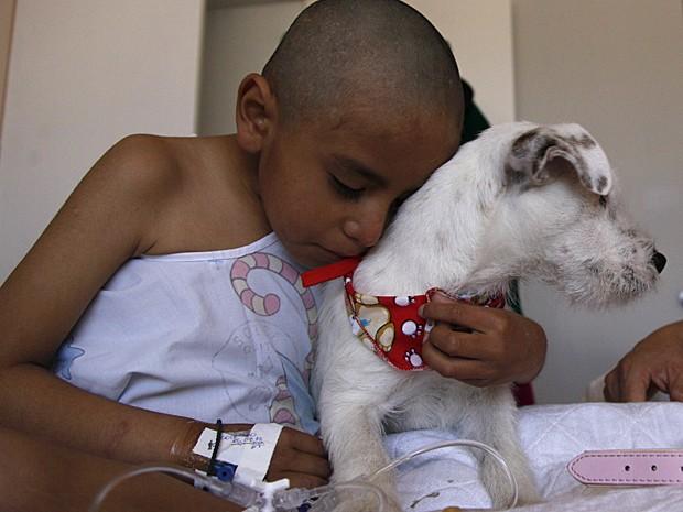 Câncer cães (Foto: Dolores Ochoa/AP)