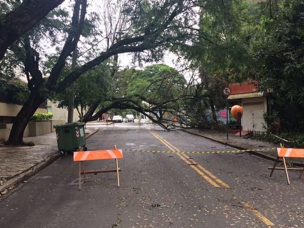 Rua dos Alecrins, no Cambuí, ficou interditada durante todo o dia (Foto: Divulgação/Arquivo Pessoal)