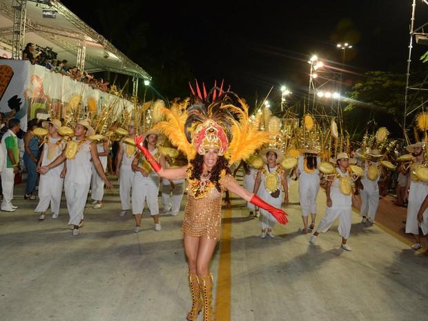 Carnaval Cubatão 2016; GRES Independência (Foto: Aderbau Gama / Prefeitura de Cubatão)
