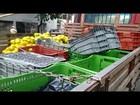 Vendedor ambulante tem produtos recolhidos no Centro de Divinópolis