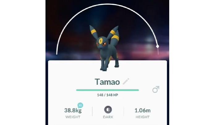 Nomeie seu Eevee como Tamao para forçar a aparição de Umbreon em Pokémon Go (Foto: Reprodução/Felipe Demartini) (Foto: Nomeie seu Eevee como Tamao para forçar a aparição de Umbreon em Pokémon Go (Foto: Reprodução/Felipe Demartini))