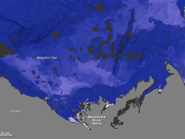 As cores alteradas mostram com a água do rio é mais quente do que a do oceano. O azul mais escuro são águas (ou gelo) a até 2 graus centígrados negativos. O mais claro indica água a até 15 graus centígrados. (Foto: Nasa)