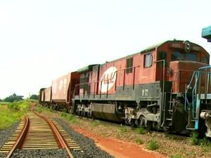 Trem da ALL  (Foto: Reprodução/EPTV)