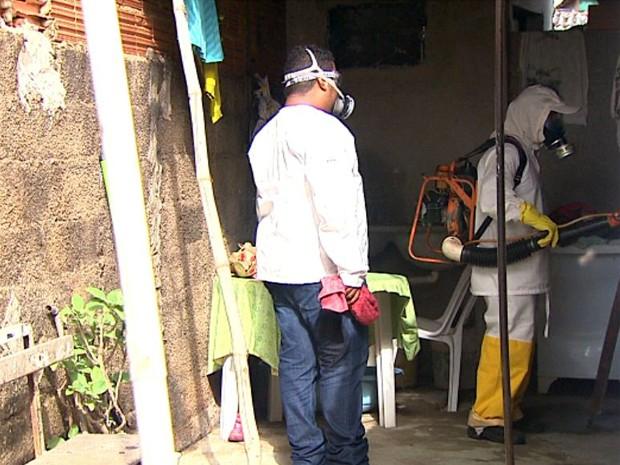 Agentes fazem trabalho de nebulização por casas em Cajuru, SP (Foto: Reprodução/EPTV)