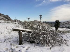 Rancho Queimado, na Grande Florianópolis, registrou neve (Foto: Mário Alberto Piske/Arquivo Pessoal)