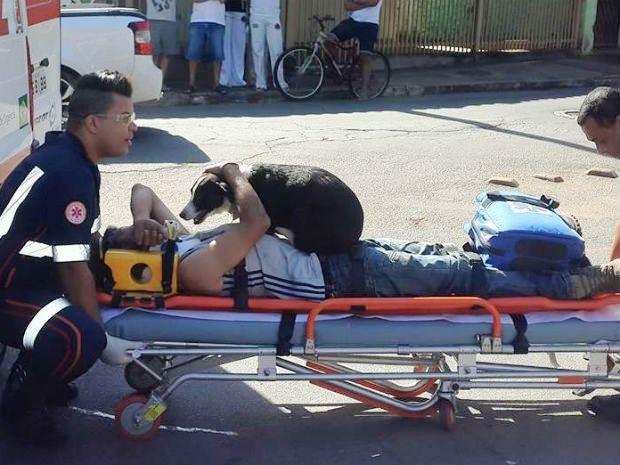 Cadela Nina subiu sobre o dono durante o socorro após acidente em Santa Gertrudes (Foto: Christopher Mariano/ Arquivo Pessoal)