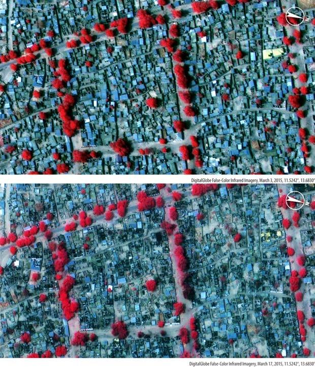 Imagens de 3 de março e 17 de março de 2015 mostram destruição de ataque do Boko Haram na cidade de Bama, na Nigéria; os pontos vermelhos indicam a vegetação e os pretos mostram áreas incendiadas (Foto: Amnesty International / DigitalGlobe)