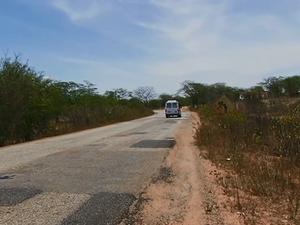 Rodovia no Sertão pernambucano (Foto: Reprodução/ TV Asa Branca)