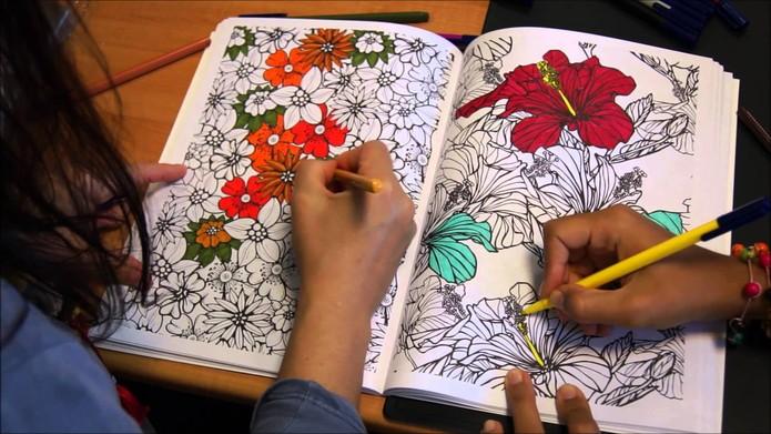 Livros de colorir fazem sucesso entre os adultos (Foto: Reprodução/YouTube)